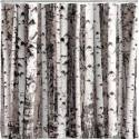 Kikkerland Beyond the Grove Shower Curtain for $8 + free shipping