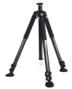 Vanguard Abeo Plus 363CT Carbon Fiber Tripod for $165 + free shipping