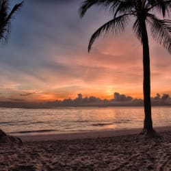 5Nts at All-Incl. Punta Cana Resort + GC $198/nt