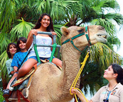 Zoo Miami coupon: up to $7 off