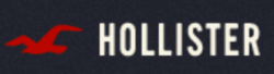 Hollister Clearance Sale: Up to 60% off + 25% off