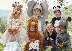 Pottery Barn Kids' Halloween Sale: 20% to 40% off