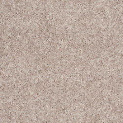 Stainmaster Essentials Carpet Collection for 88 Cents Per Sq. Ft.