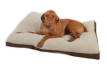 "30x40x3"" Gusset Pet Bed"