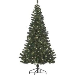 6-Ft. Pre-Lit Christmas Tree in Clear