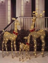 Lighted 3-Pc. Deer Family Set