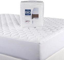 The Big One Essential Mattress Pad for $11
